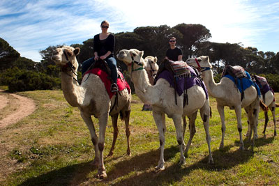 family friendly winter activities accommodation Cape Town